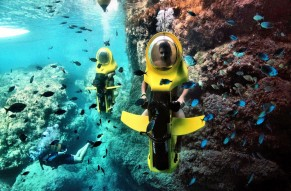 Experience The Bond Safari Underwater Scooter