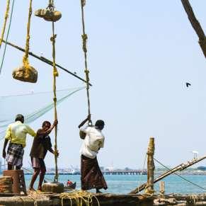 Glimpse of Cochin City Boat Cruise Tour