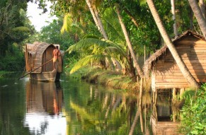 Amazing Alleppey Munnar Honeymoon in a Tree House
