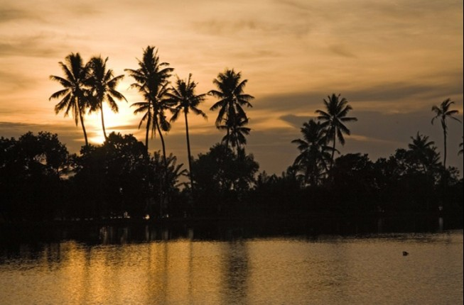 Backwaters and Cochin Heritage Tour
