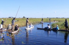 Captivating Boat Cruise Day Tour At Okavango Delta