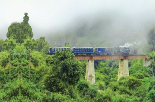 Experience Beautiful Botanical Gardens of Ooty from Coimbatore