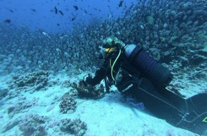 Malvan Scuba Diving and Water Sports Combo Package from Goa