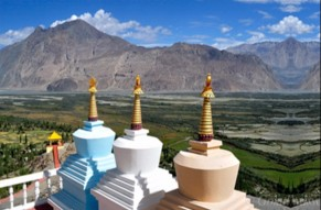 Lush Green Nubra Valley Tour with an Expert