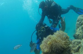 Open Water Diver Course PADI CERTIFIED
