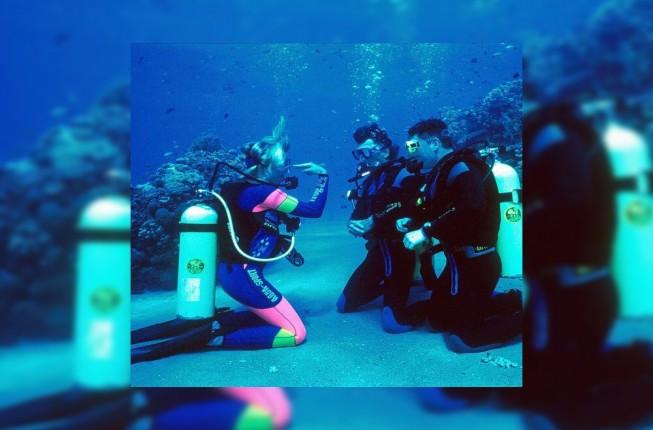 PADI Scuba Diving Courses