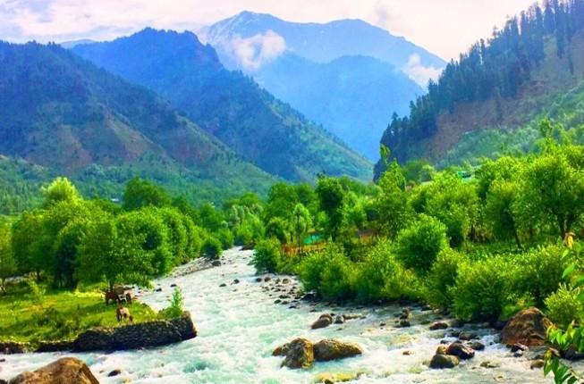 Amazing Kashmir Trip with an Insider