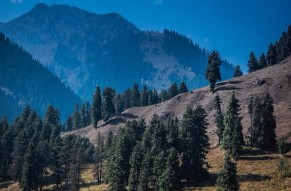 Private Day Tour Pahalgam from Srinagar