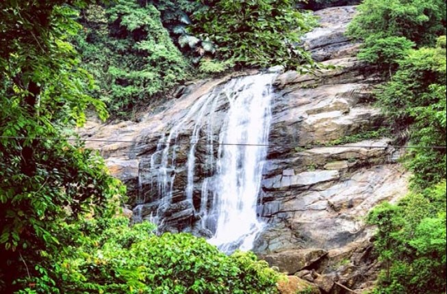 Private Day Trip to Vazhachal Falls including Lunch
