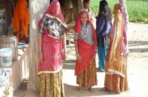 Private Jodhpur City Tour with Bishnoi Villages Safari