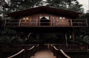 Freaking Overnight Tree House Stay in Chikmagalur