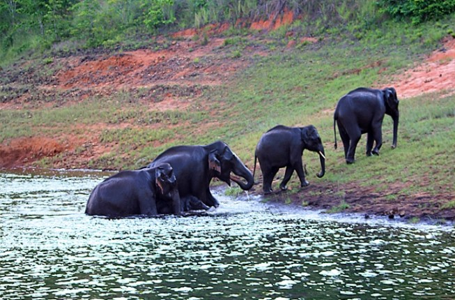 Explore The Remarkable South India