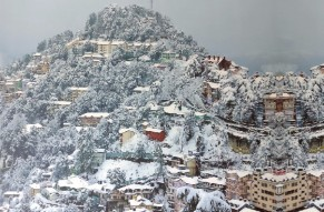 Majestic Shimla Tour by Volvo from Delhi