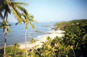 Get Eco-Friendly in Goa